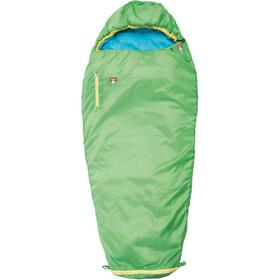 Grüezi-Bag Grow Colorful Slaapzak Kinderen, gecko green